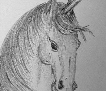 Emma_Gawthrop_-_Unicorn